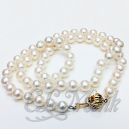 "18"" Strand of Akoya Pearls"